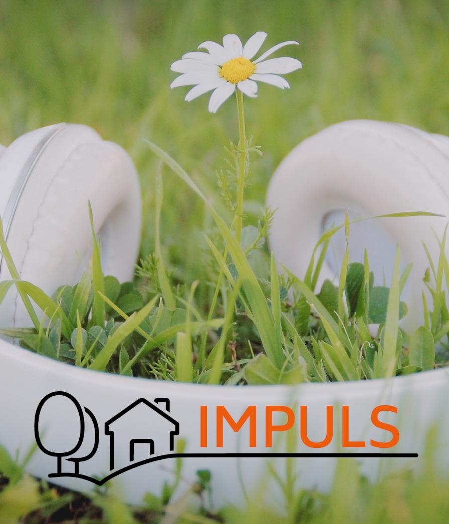 IMPULS – Das neue Förderprogramm für Amateurmusik in ländlichen Räumen